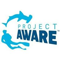 Project Aware Organisation
