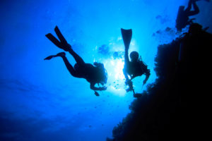 Search and Recovery Diver - PADI Specialty Courses Phuket